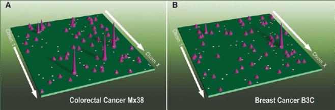 Across the Comparative Oncogenomic Landscape