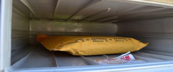 Sending Plasmids: How to Avoid Jail Time and Shredded Envelopes