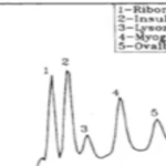 Fast separation of peptides using conventional HPLC equipment