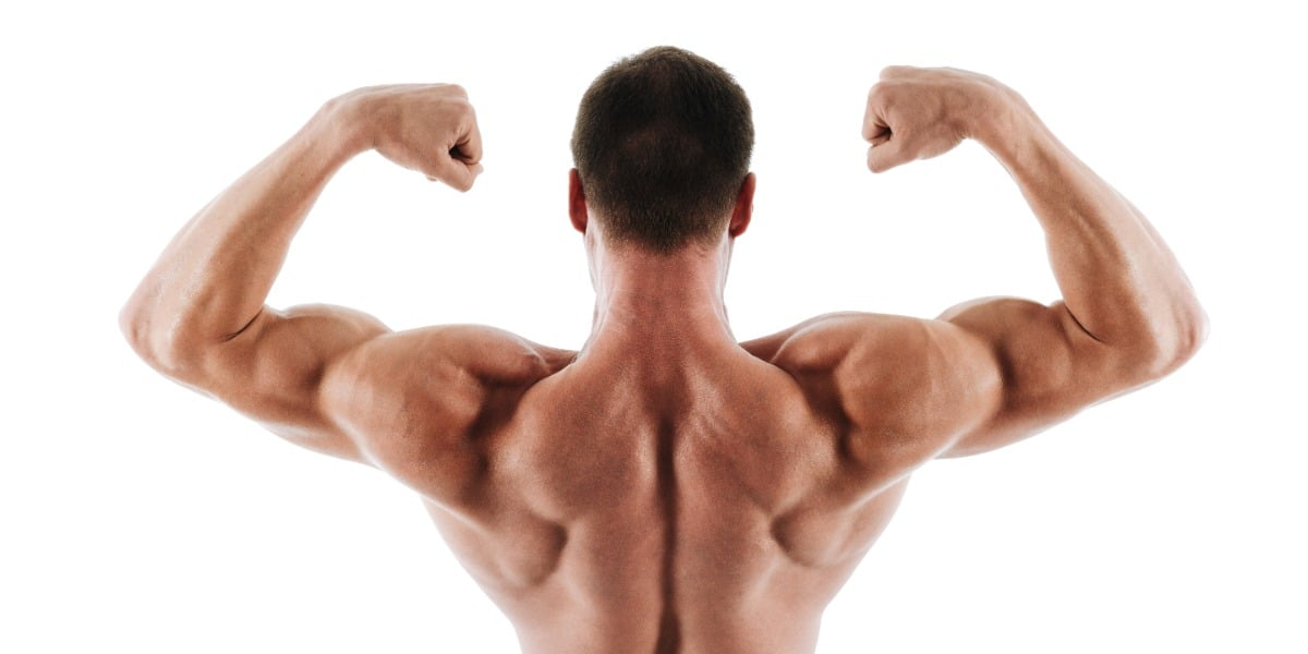 Image of a young man showing his back to highlight how periodic acid Schiff stains polysaccharides such as glycogen