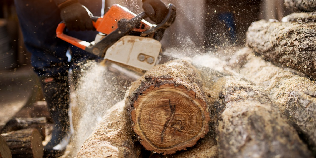 Image of a lumberjack cutting a tree to represent tissue sectioning tips