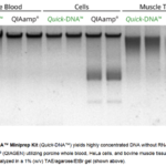 Zymo Research's <i>Universal Quick-DNA Miniprep Kit</i>: The Only Superpower You Will Ever Need