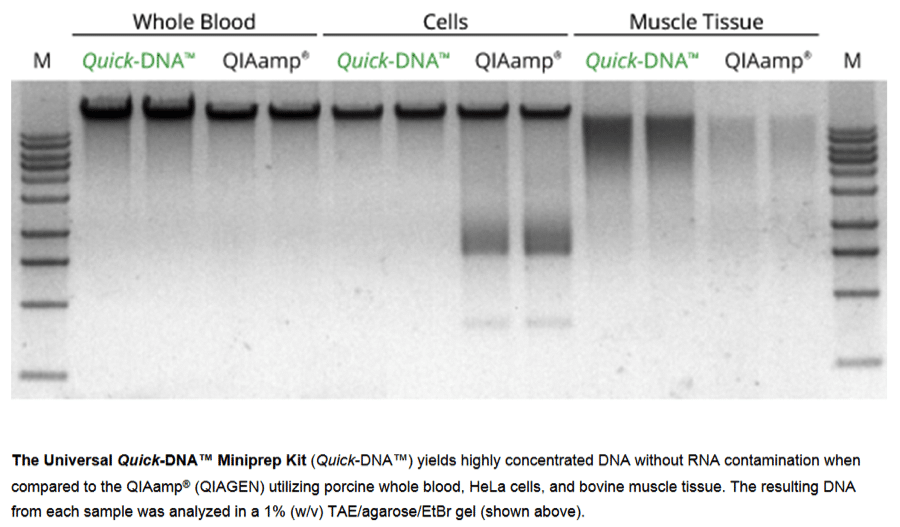 Zymo Research's Universal Quick-DNA Miniprep Kit: The Only