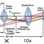 fundamentals_of_fluorescence_microscopy