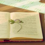 Top Ten Science Site for Tea-Break Reading