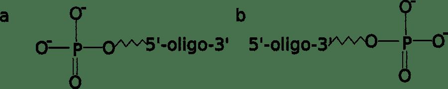 Modify Your Oligos, Modify Your Experiments