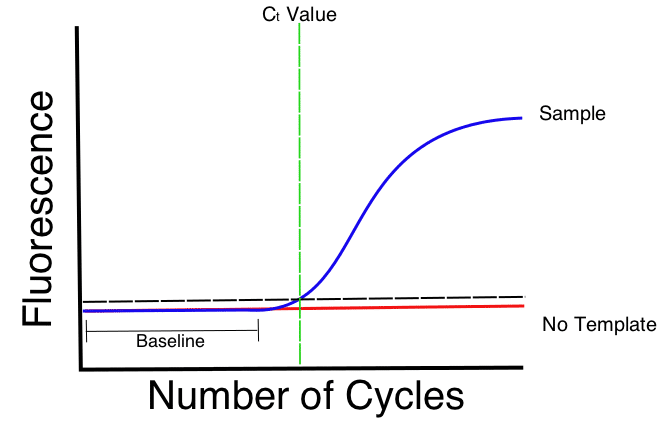 What is a cq ct value bitesize bio for Value curve analysis template