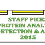 Protein Analysis, Detection, and Assay
