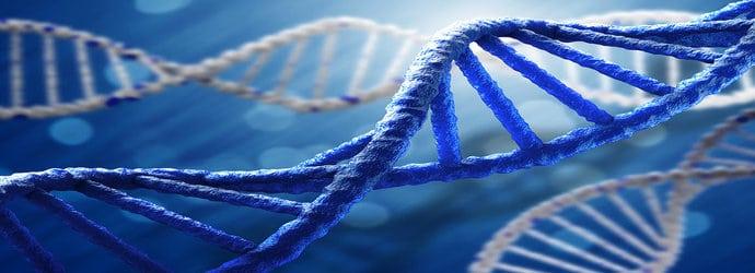Genomics_&_Epigenetics