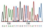 Sanger Sequencing: How the Genome Was Won