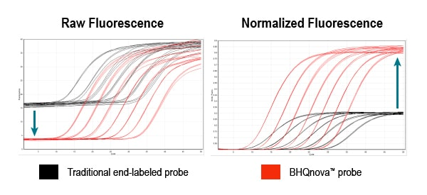 Quenching to Success with BHQnova Probes: Turn to the Dark Side