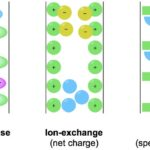 How Separation Works in Column Chromatography Methods