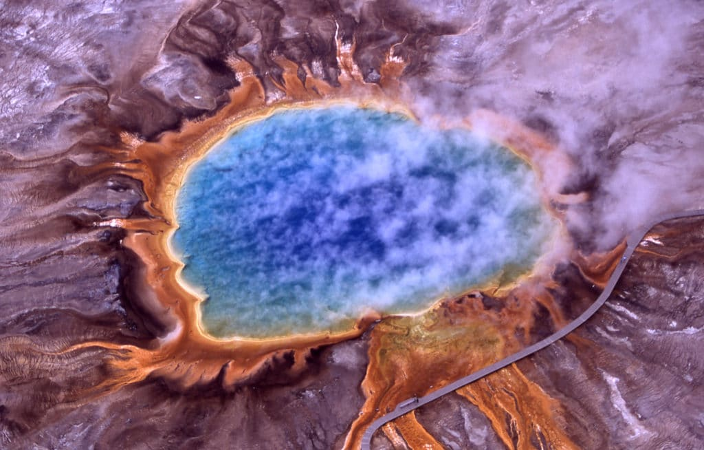 Introducing You to the Wonderful World of Microbes!