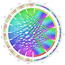 Genomics software output