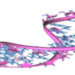 Quantifying & Assessing RNA: TE or not TE?