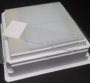 Single microscope slide on a box of slides.