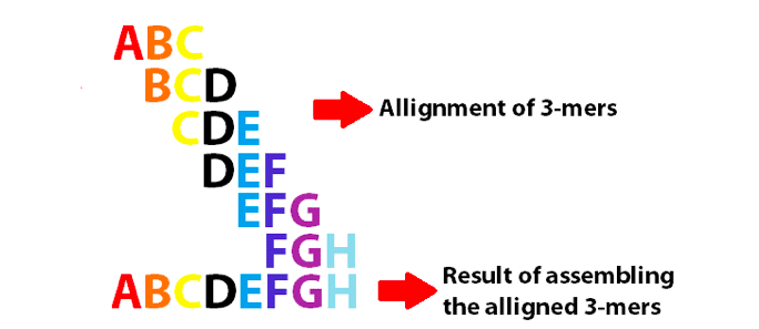 De Novo DNA Sequencing and the Special k-mer