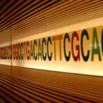 DNA sequence MLPA