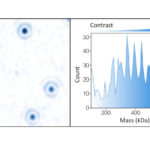 How to Weigh Molecules with Light Using Mass Photometry