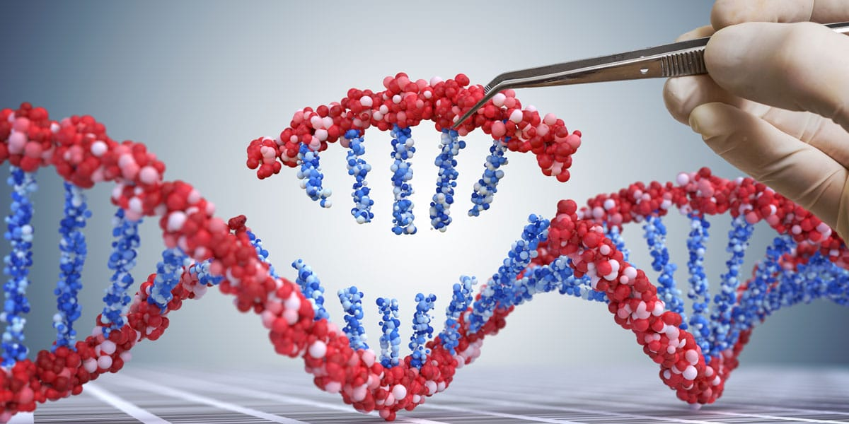 DNA being modified using a tool to represent the various CRISPR tools available.