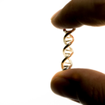 Hand showing isolation of DNA helix