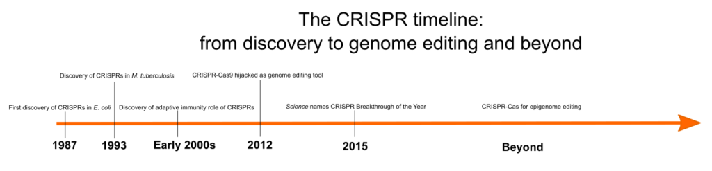 Timeline of CRISPR discovery and development