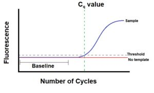 Image of a qPCR graph showing how the Cq value is obtained