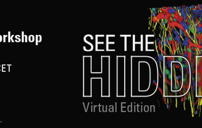 See The Hidden: Virtual Neurosciences Workshop