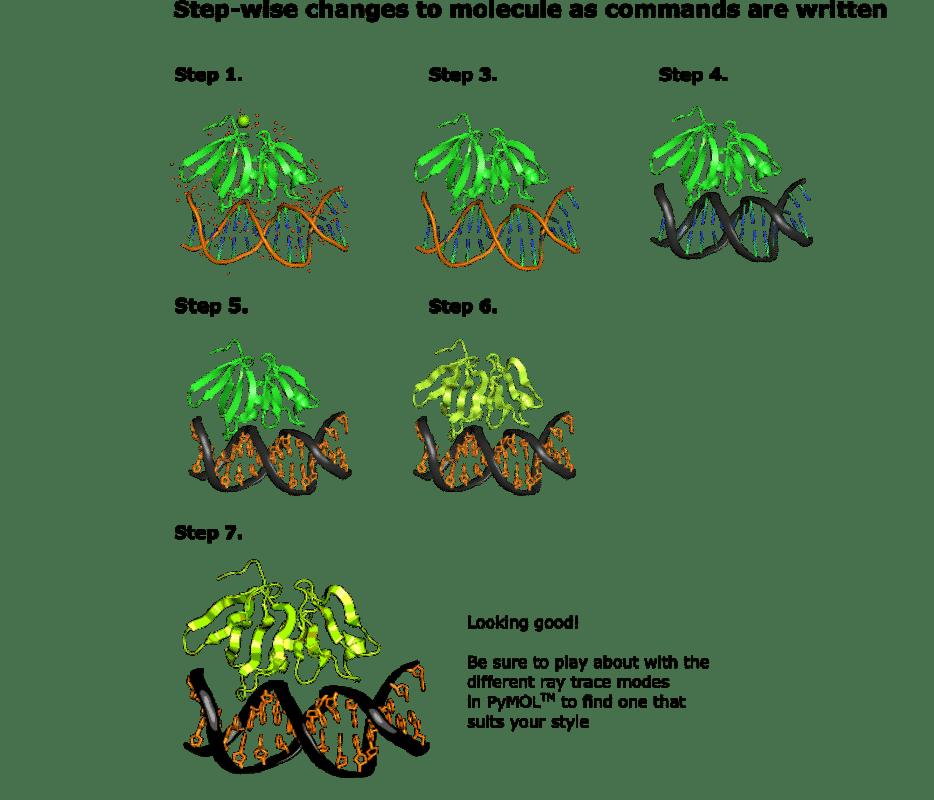 Learn to Draw a Molecule in PyMOL™ in 8 Easy Steps