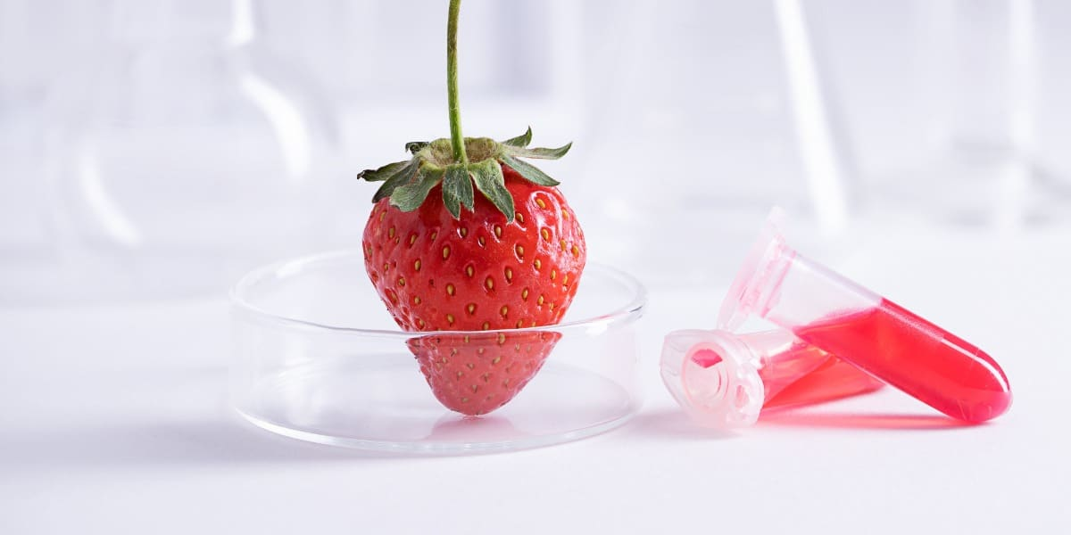 Image of strawberry and tubes to represent how DNA extraction kits work in the lab
